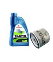 Olej + filtr oleju BRIGGS & STRATTON